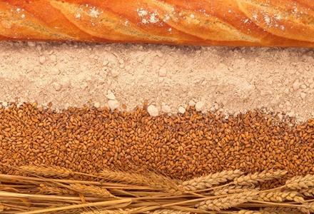 H1101615-Wheat_and_bread-SPL-1.jpg