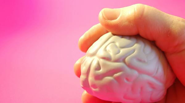 cerebro2.jpg.jpg