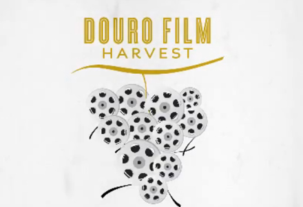 douro-film-harvest-1.jpg