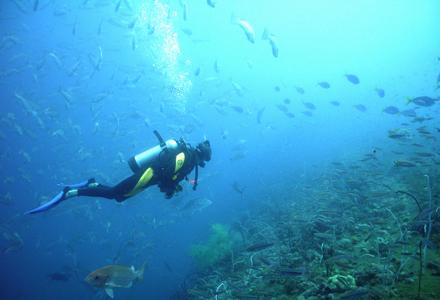 mergulhador-1.jpg