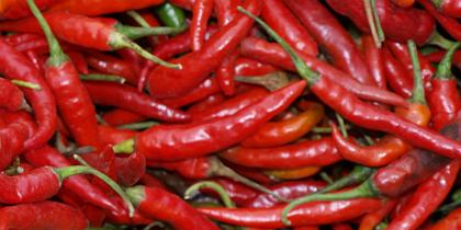 pepper.jpg.jpg