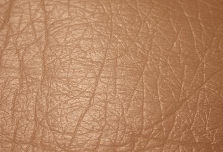 skin-1.jpg