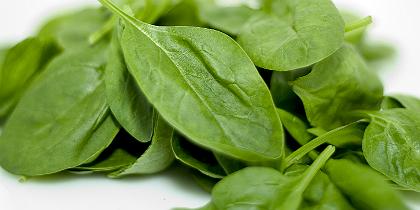spinach.jpg.jpg