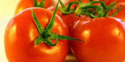 tomates.jpg.jpg