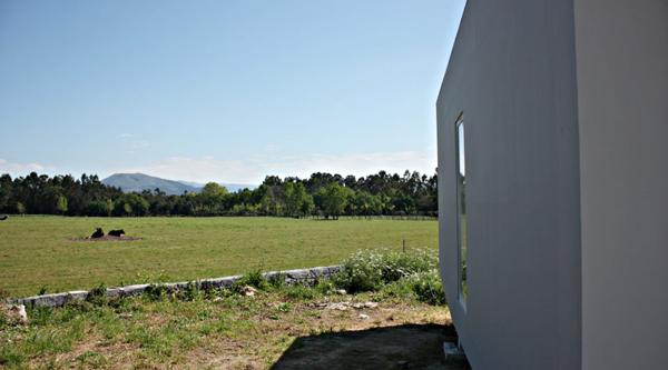 uchi-1.png